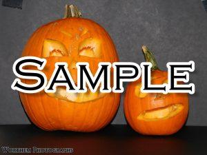 Halloween Comng Soon